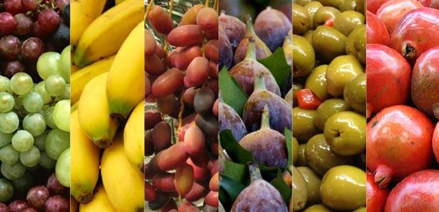 Di muka bumi ini, ada banyak tumbuh-tumbuhan yang tubuh subur dan memiki manfaat beragam untuk tubuh manusia. Mulai dari sayur-sayuran, buah, biji-bijian dan lain halnya. Allah telah memberikan rezeki yang melimpah dan tak terhitung, salah satunya dari berbagai tumbuh-tumbuhan yang tubuh di bumi ini.